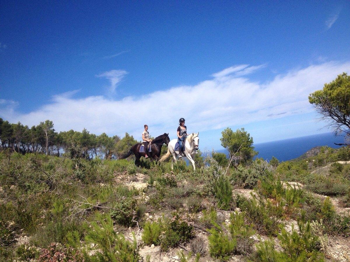 Exploring Ibiza on horseback